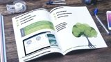 Design A4 size Brochure in just $15 within 5 hours