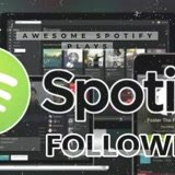 Deliver 4000 HQ USA SPOTIFY Plays! BEST service for plays around