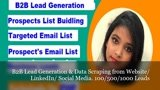 B2B lead generation data scraping from web & LinkedIn. 100 leads