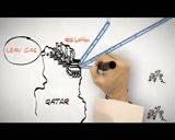 Amazing whiteboard animation